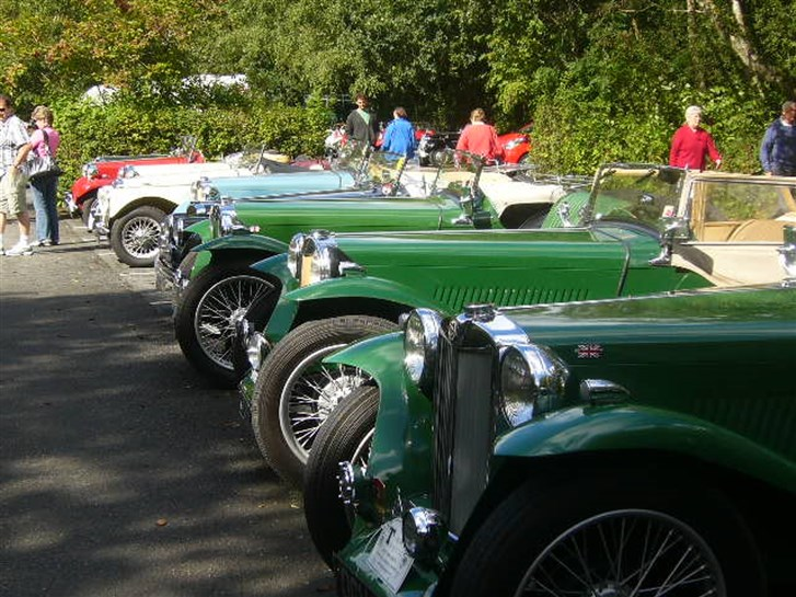 MG T-types in the car park